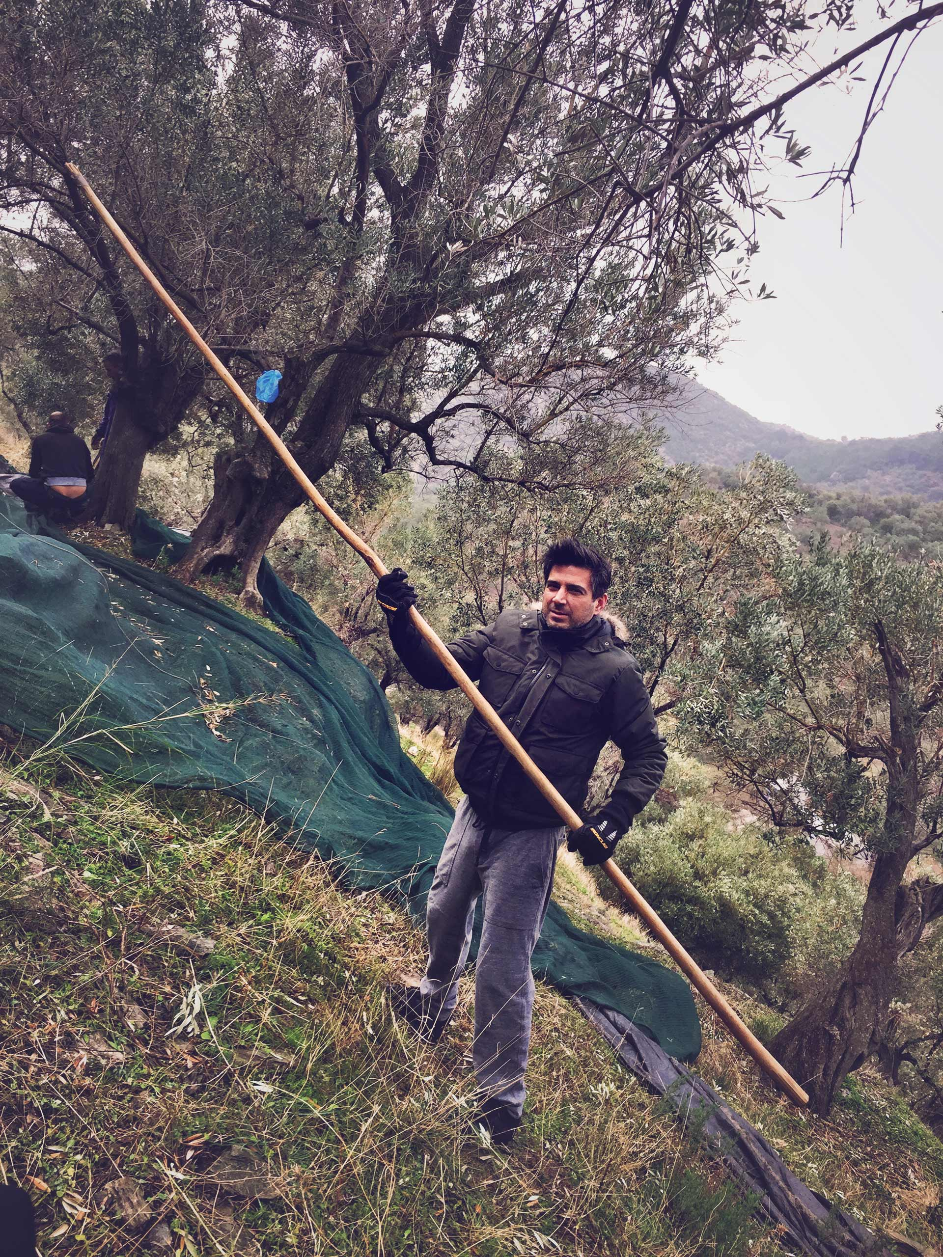 Huile-d'Olive-Extra-Vierge-Biologique-Koukaras-04>